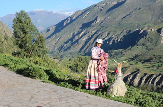 Arequipa &#8211; Colca Canyon <span>2 days <br> 1 night</span>